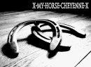 Photo de x-my-horse-cheyenne-x