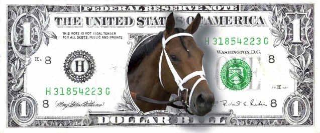 Le cheval la plus belle invention de l'homme