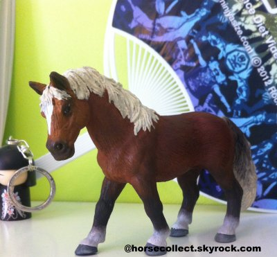 Epona (merci à Sell-Hippie-schleich)