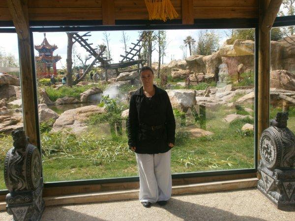 Journée Zoo Parc de beauval